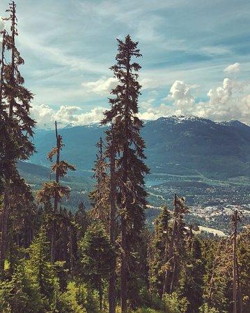 Whistler Blackcomb: photo2.jpg