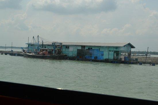 Селангор, Малайзия: a floating fish farm nearby