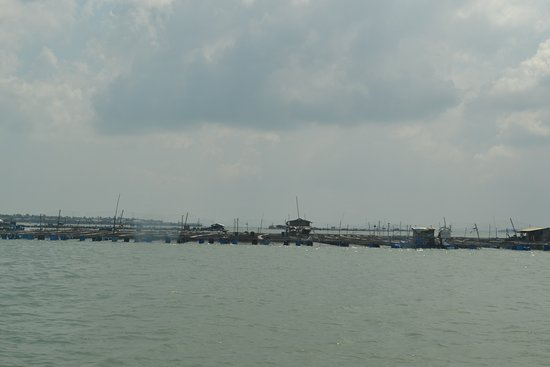 Selangor, Malezja: Approaching the island
