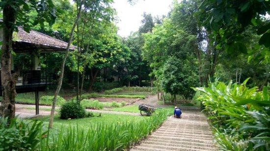 Hang Dong, Tailandia: photo2.jpg