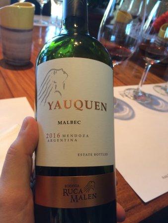 Lujan de Cuyo, Argentyna: photo6.jpg