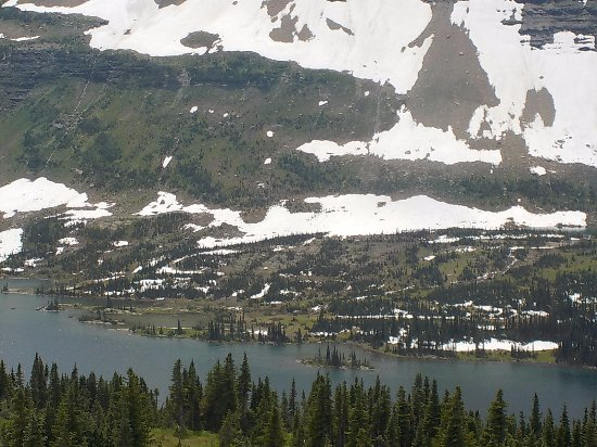 West Glacier, MT: Hidden Lake Overlook at Logan's Pass