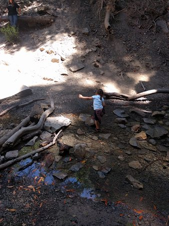 Nojoqui Falls Park : IMG_20170721_122118_large.jpg