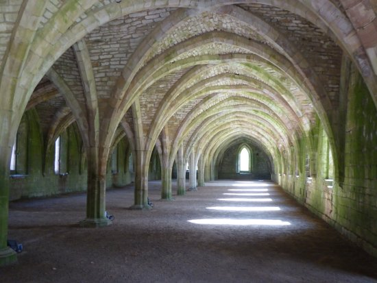 Fountains Abbey and Studley Royal Water Garden: The famous undercroft