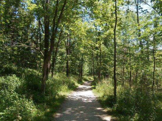 West Bloomfield, MI: footpath
