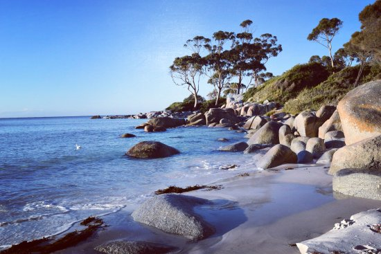 St Helens, Australia: See the Bay of Fires