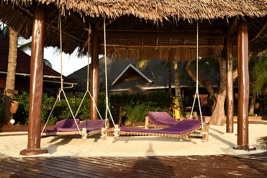 mnarani beach cottages updated 2018 prices resort reviews rh tripadvisor com mnarani beach cottages zanzibar tanzania mnarani beach cottages zanzibar tanzania