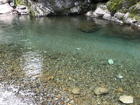 Naka-cho, ญี่ปุ่น: photo2.jpg