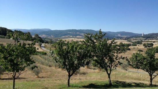 Pomarance, Italia: IMG-20170718-WA0003_large.jpg