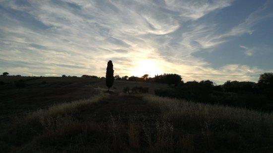 Pomarance, Italia: IMG-20170717-WA0015_large.jpg