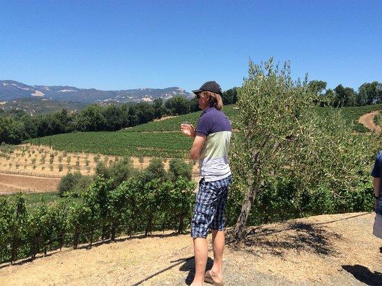 Glen Ellen, Californien: photo0.jpg