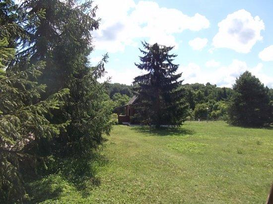 Vitebsk Region, روسيا البيضاء: Музей-усадьба Ильи Репина «Здравнёво»