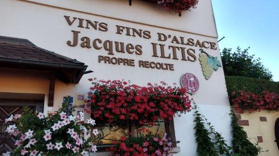 Domaine Jacques Iltis & Fils