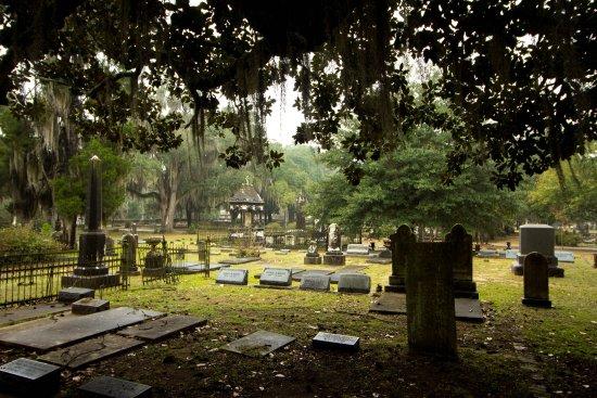 Selma, AL : Gravestones