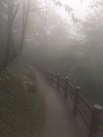 Fujido Cave: Fujido Stalactite Cave