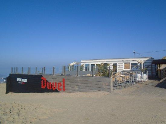 Bredene, Belgium: Knus terras met zicht op strand, zee en duinen