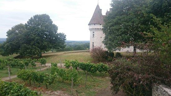 Monbazillac, Frankreich: IMG-20170722-WA0002_large.jpg