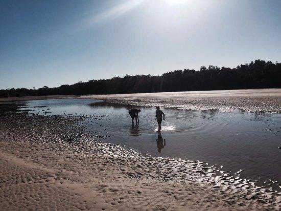 Moonee Beach Photo