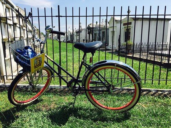 FreeWheelin' Bike Tours: photo1.jpg