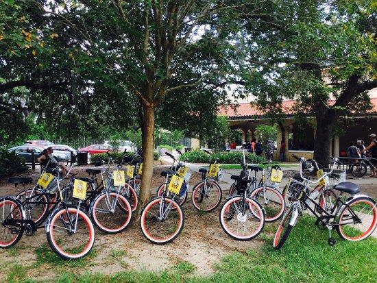 FreeWheelin' Bike Tours: photo2.jpg