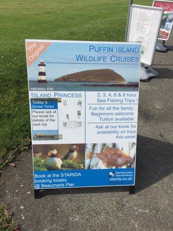 Beaumaris, UK: photo3.jpg
