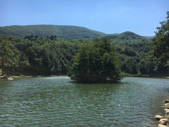 Bagno di romagna lago pontini - Lago pontini san piero in bagno ...