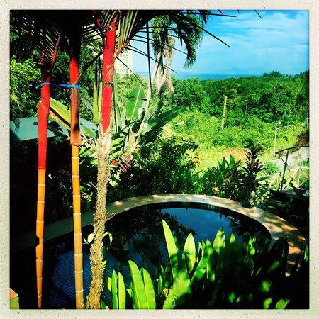 Nanga Damai Homestay Photo