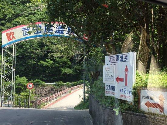 Takarazuka, Japão: 武田尾溫泉 紅葉館別庭Azalée