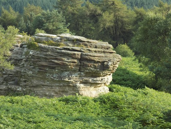 Pickering, UK: The Bridestones Glacial Erratics above Staindale in Dalby Forest