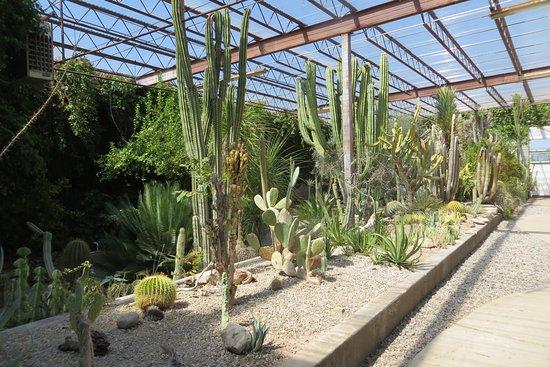 Living Desert Zoo And Gardens State Park Carlsbad Nm Top Tips Before You Go Tripadvisor