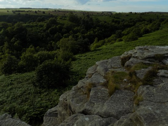 Pickering, UK: Staindale, in Dalby Forest, from the top of the Bridestones.