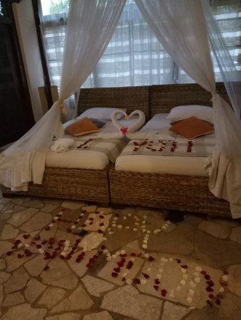puri cantik bungalow ubud indonesia   review hotel
