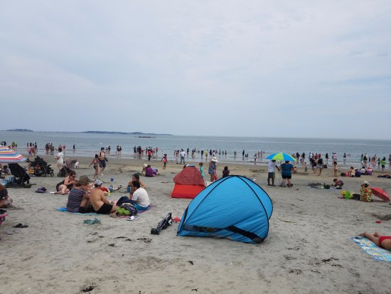 Revere, MA: No room to swim, not that I would.