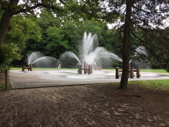 Zipline-Parks & Hochseilgärten