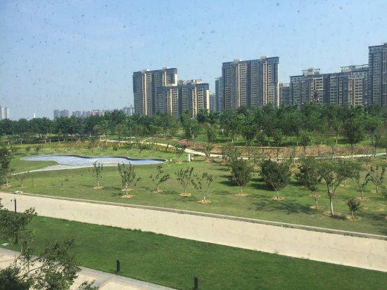 Tangshan, Κίνα: Backyard garden and Pool