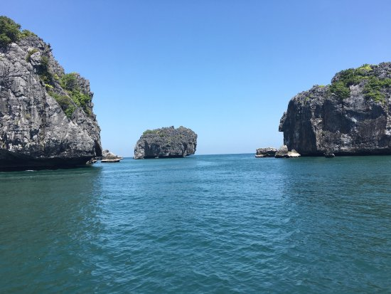 In Sea Speedboat: photo1.jpg