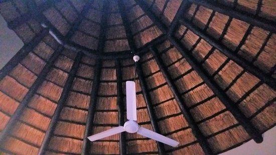Crocodile Bridge Rest Camp: Plafond du bungalow