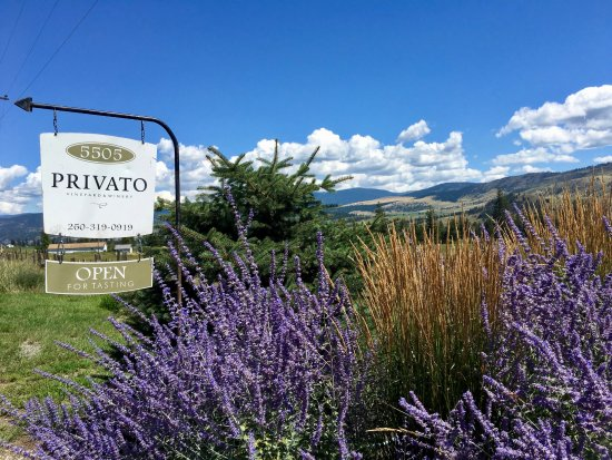 Privato Winery in Kamloops, BC