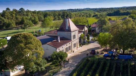 Petit-Palais-Et-Cornemps, França: Vue aérienne du Château Vieux Mougnac