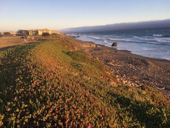 Cavalier Oceanfront Resort: photo2.jpg