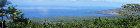 Honaunau, HI: Pele Plantations