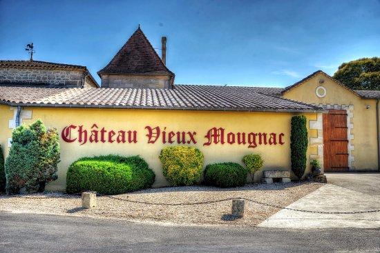 Petit-Palais-Et-Cornemps, França: Derrière du Château Vieux Mougnac