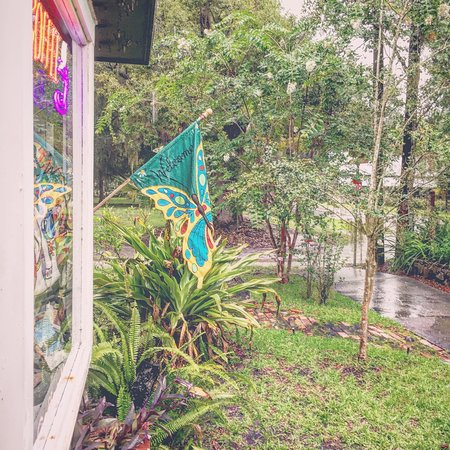 Micanopy, FL: Saturday in July at Somewhere Along The Way