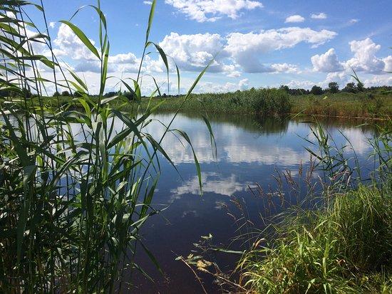 Ilmatsalu, Estonia: photo0.jpg