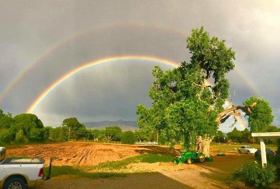Корралес, Нью-Мексико: Corrales double rainbow