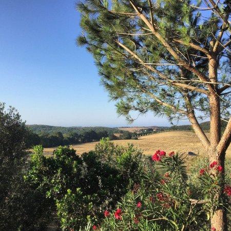 תמונה מLe Colline di Capalbio