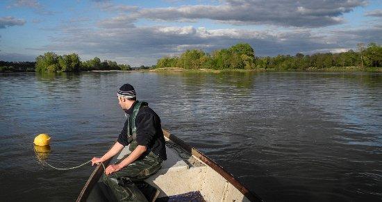 Brehemont, Frankrike: Tous les poissons cuisinés sont pêchés en Loire par le patron