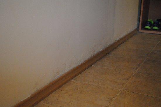 .Com Hotel : Wall