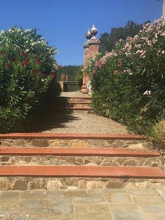 Vagliagli, Italy: steps to pool