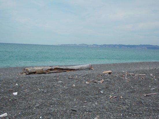 Napier, Nova Zelândia: beach is pebble